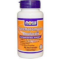 Сахаромицеты буларди, Saccharomyces Boulardii, Now Foods, 60 капсул