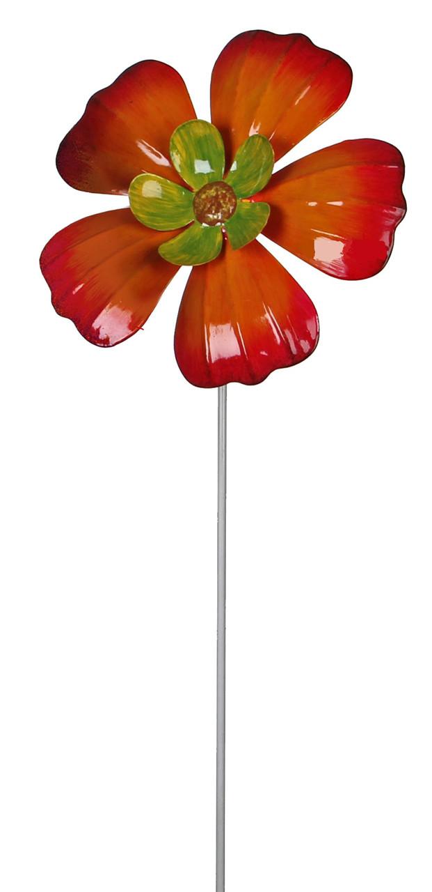 Цветы в дом купить харькова, заказ цветов в десногорске
