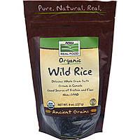 Дикий рис, Wild Rice, Now Foods, органик, 227 г