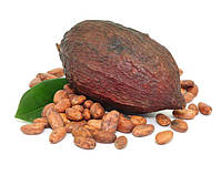 Какао-продукты, кэроб