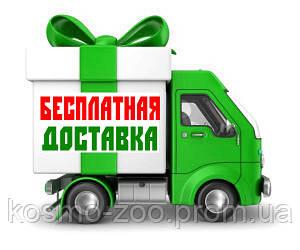 Бесплатная доставка!* (По г.Киев и всей Украине до отделения, кол-во товаров ограничено)