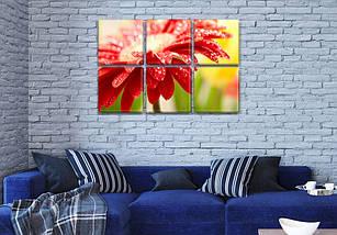 Модульная картина Красная Гербера на Холсте син., 52x80 см, (25x25-6), фото 3
