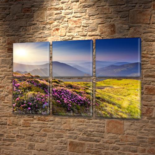 Купити картину модульную на Холсте син., 52x80 см, (25x25-6)