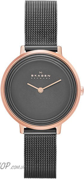 Часы SKAGEN SKW2277