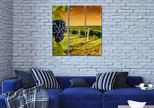 Модульная картина Виноградное поле, на Холсте син., 65x65 см, (65x20-3), фото 3