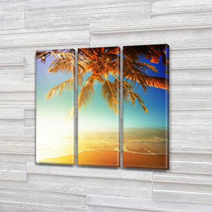 Модульные картины фото на Холсте син., 65x65 см, (65x20-3), фото 2