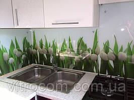 Кухонний фартух з скла тюльпани