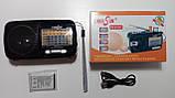 Радіоприймач RRedSun RS-815UT, FM/MW/SW, USB/microSD, mp3, акумулятор Li-Ion 1200mAh, фото 6