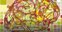 """Бета-тренинг ЭЭГ на комплексах биоуправления """"Бослаб"""""""