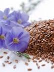 Лен посевной семена