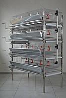 Клітка для перепелів на 240 голів