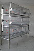 Клітка для бройлерів до 60 голів