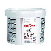 Заменитель молока для щенков Royal Canin Babydog milk, 2 кг