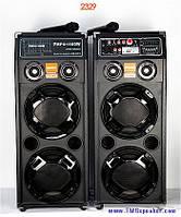 Активная акустическая система DP-2329 с двумя радиомикрофонами