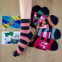 Носки женские ,демисезонные Житомир Украина х\б 23 р.