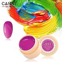 Гель краски и гель лак 2 в 1 Canni, №551