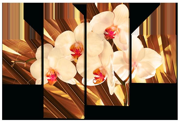Модульная картина Цветы с золотым фоном