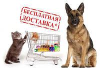 Товары с бесплатной доставкой*(по г.Киев и всей Украине до отделения, ОГРАНИЧ. КОЛ-ВО)