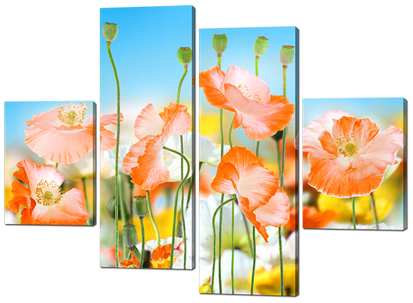Модульная картина Красочные цветы
