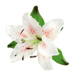 Декор кондитерський Добрик Лілія з листками