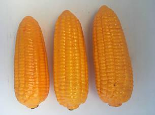 Искусственная кукуруза. Муляж кукурузы., фото 2