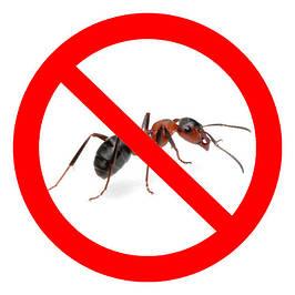 Засоби для боротьби з мурахами