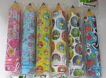 """Пенал-карандаш школьный, студенческий, пластик. 1 змейка . ʺСовыʺ, """"Принцессы"""", """"Мячи"""" 3,5*21см S-1630\31\29"""