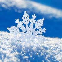Зимние омыватели стекла