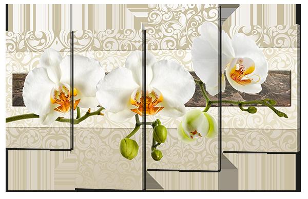 Модульная картина Орхидеи в светлых тонах