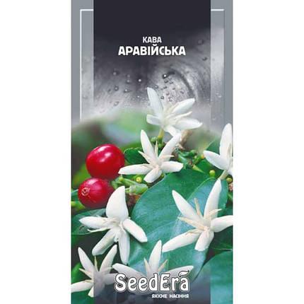 Семена Кофе аравийское комнатное 10шт SeedEra, фото 2