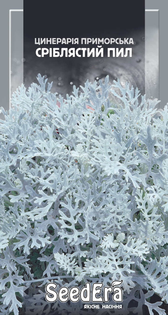 Семена циненарии Серебряная пыль 0,1г SeedEra