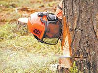 Спиливание деревьев, обрезка веток, корчевка пней