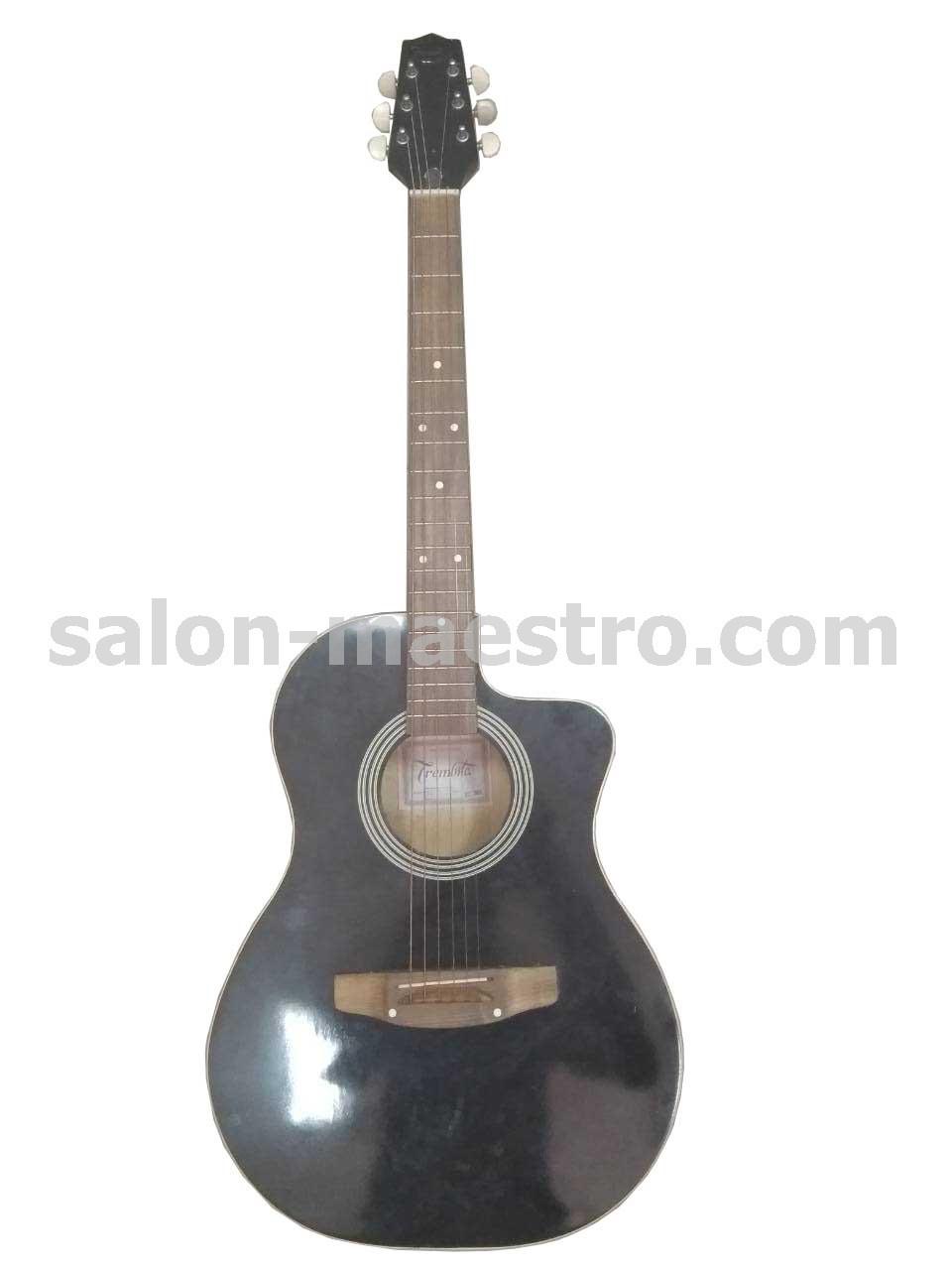 (01\0620) Гитара Акустическая Трембита в идеальном состоянии