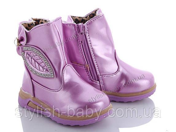 Детская обувь оптом. Детская демисезонная обувь бренда GFB для девочек (рр. с 20 по 25), фото 2