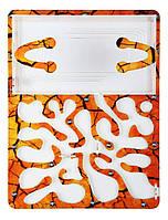 "Ферма ""Сахара"" комплект с Кормом и муравьями M. Structor 5-10 особей, фото 1"