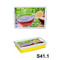 Піднос на подушці з ручками і бортами (S41.1)