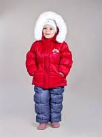 Зимний комплект - куртка и полукомбинезон Evolution