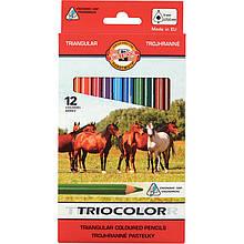 """Олівці кольорові Triocolor Jumbo """"Horses"""" , 12 цв."""