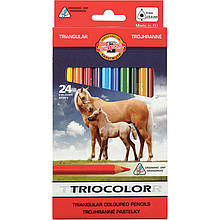 """Олівці кольорові Triocolor Jumbo """"Horses"""" , 24 кол."""