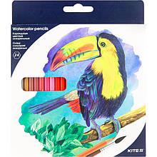"""Олівці кольорові акварельні, 24 шт. Kite """"Птахи"""""""