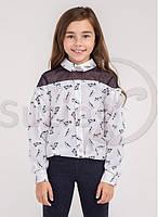 Блуза нарядная с котиками Раяна ТМ Suzie Размеры 122-140