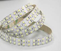 Светодиодная лента 3528 Standart (герметичная) 240 диодов, фото 2