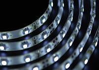 Светодиодная лента 3528 Premium (герметичная) 60 диодов, фото 1