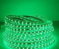 Светодиодная лента LED 3528 Green 60RW, Световое оформление помещений, Гибкая лента светодиодная зеленая