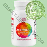 Ассимилятор (Assimilator) - улучшает пищеварение, профилактика диабета, дисбактериоза