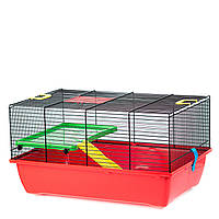 Клетка для маленьких грызунов GINO + PLASTIC EKO G034E ™️ Inter Zoo (420*290*260 мм)