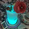 Беспроводной светодиодный светильник-ваза CL1120