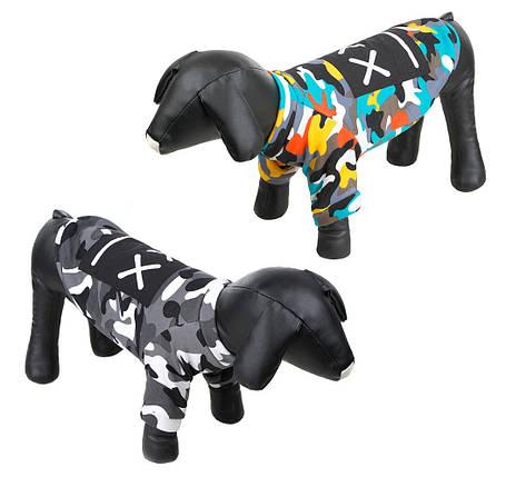 Толстовка для собак - 2 цвета, фото 2
