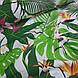 Ткань польская попугаи белые в ярко-зеленых листьях на белом фоне, фото 4