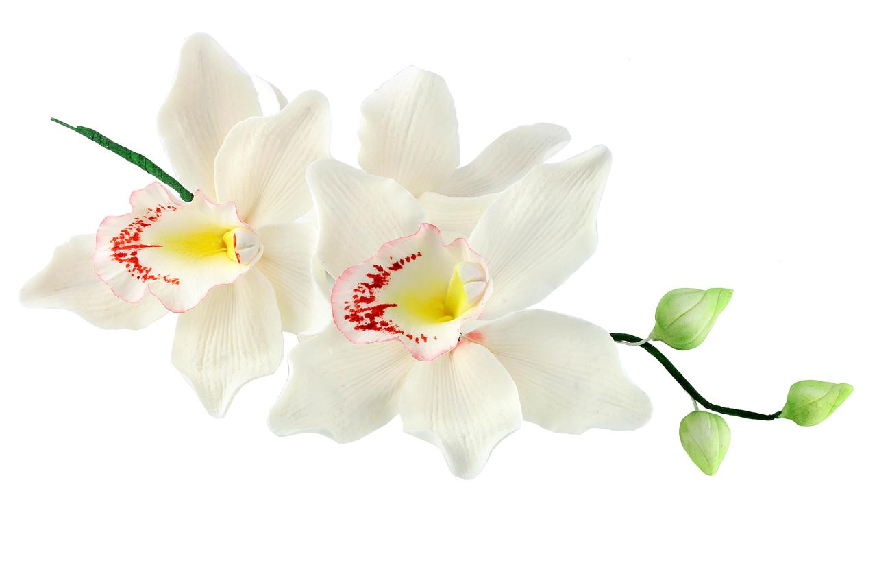 Декор кондитерський Добрик Гілка орхідеї великої з бутонами